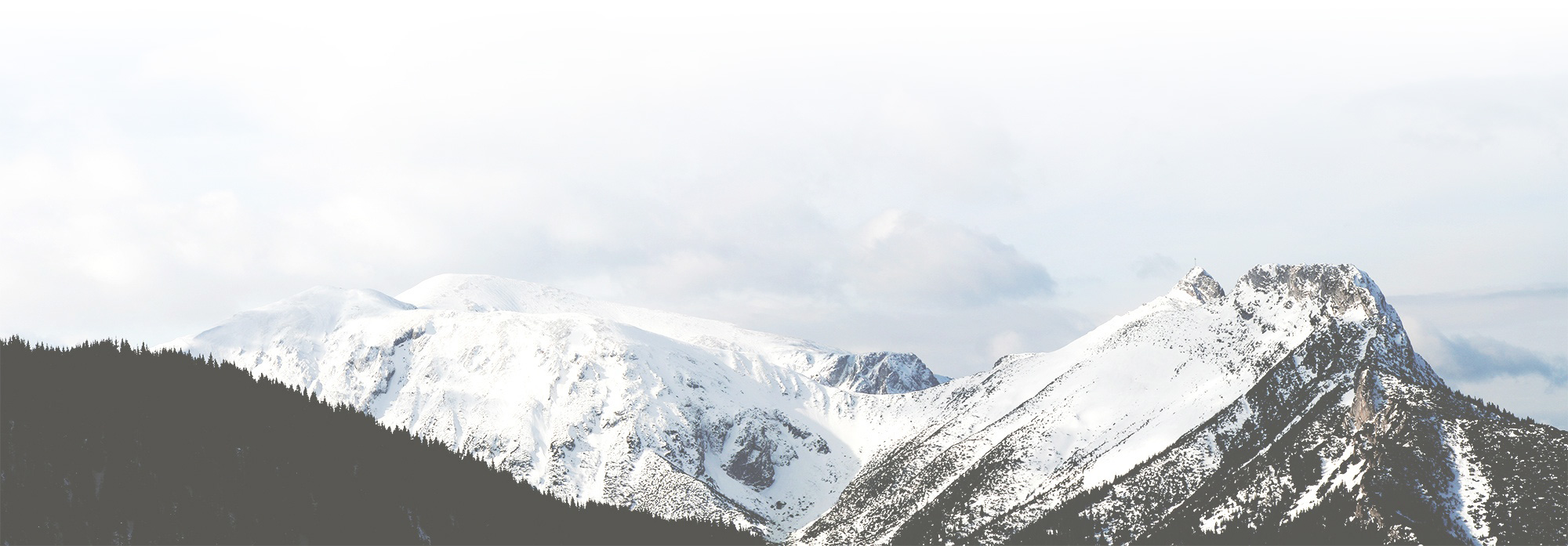 Be the one to stand out in the crowd